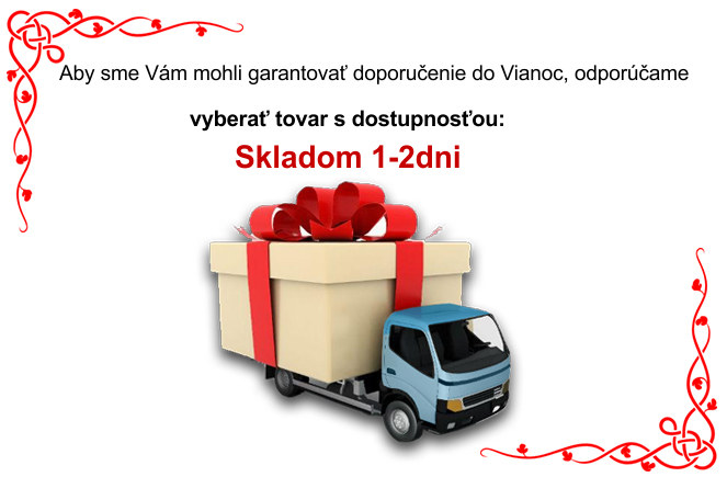christmas delivery SK